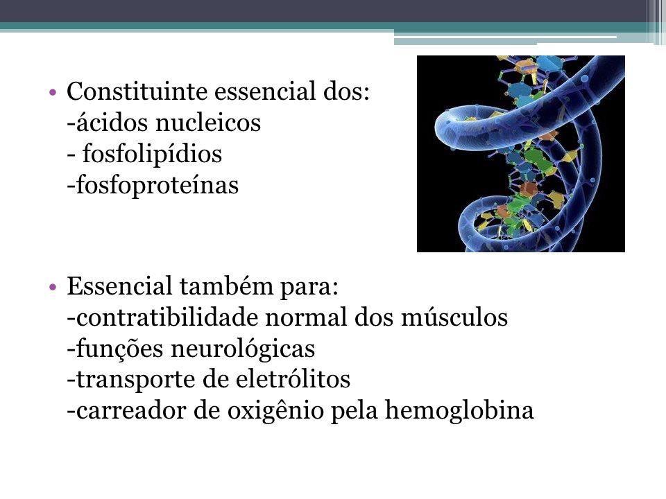 Constituinte essencial dos: -ácidos nucleicos - fosfolipídios -fosfoproteínas