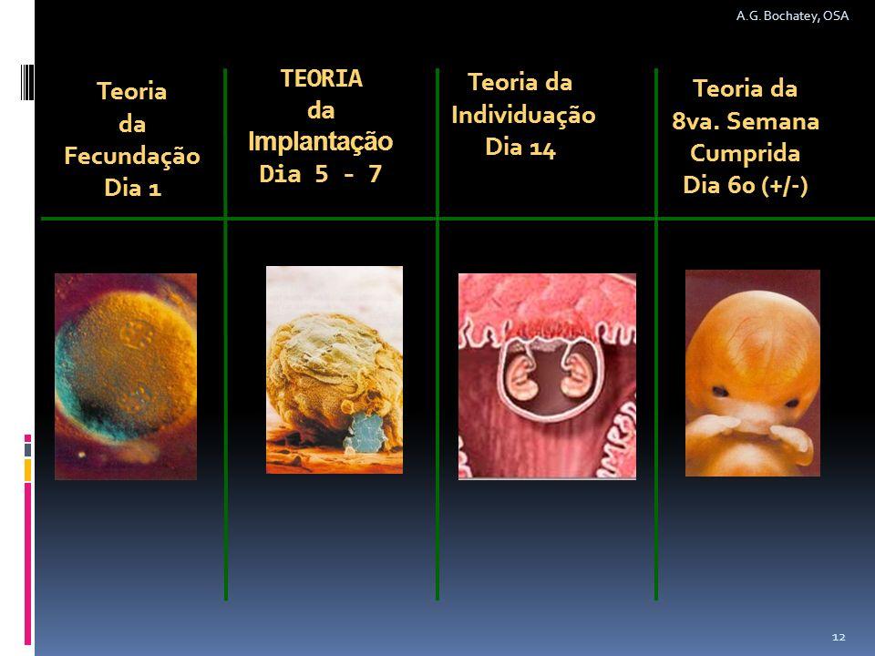 TEORIA da Implantação Dia 5 - 7