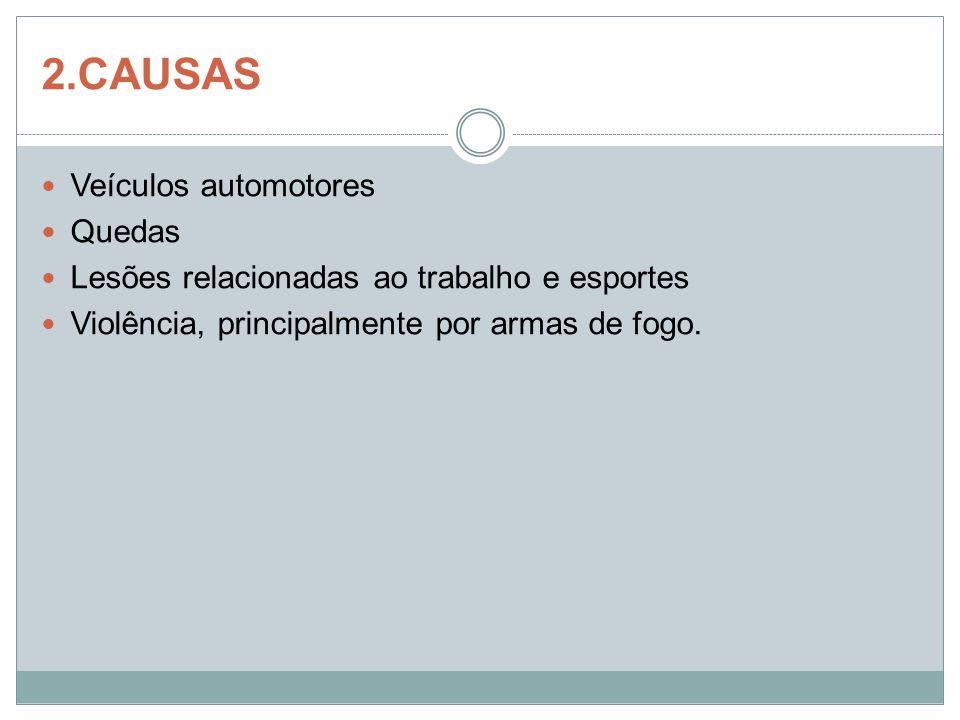 2.CAUSAS Veículos automotores Quedas