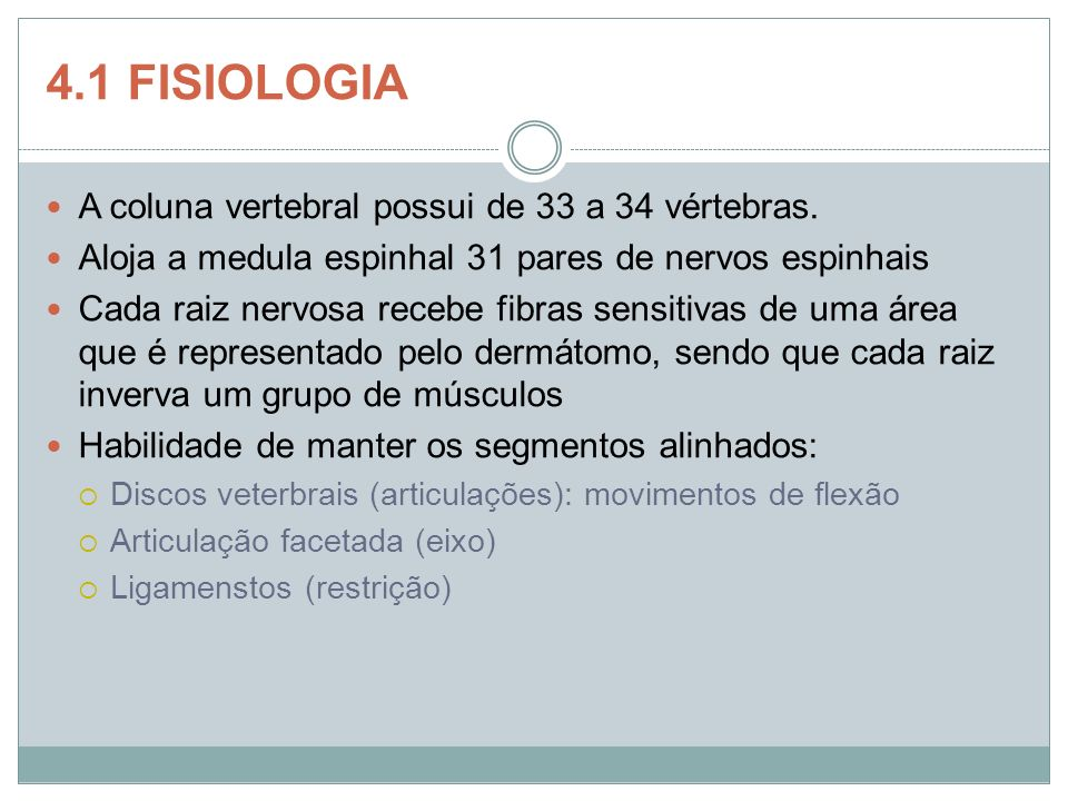 4.1 FISIOLOGIA A coluna vertebral possui de 33 a 34 vértebras.