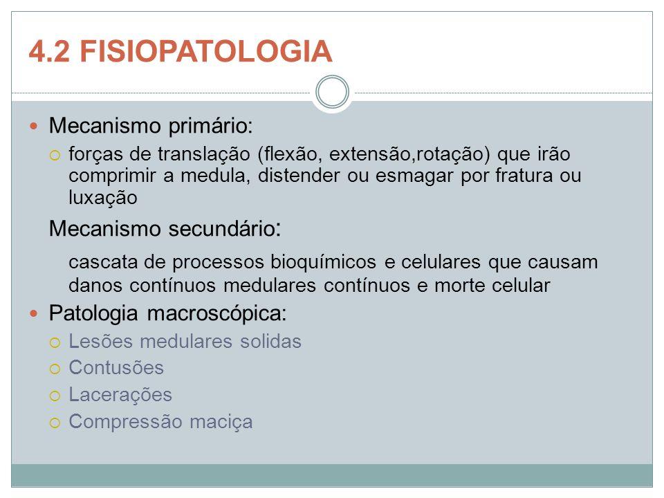 4.2 FISIOPATOLOGIA Mecanismo primário: