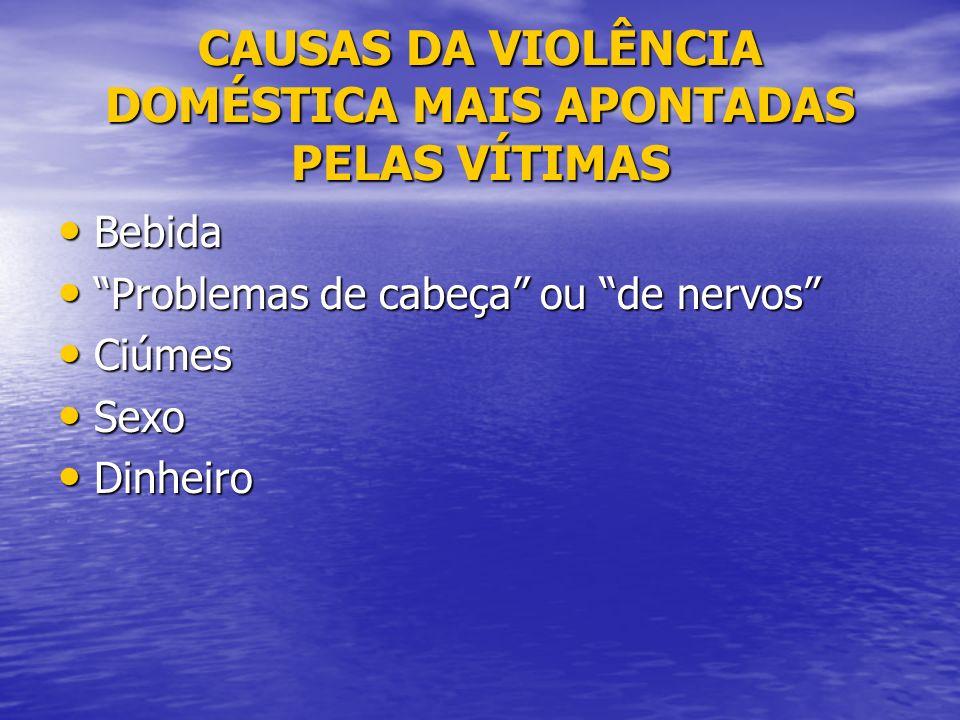 CAUSAS DA VIOLÊNCIA DOMÉSTICA MAIS APONTADAS PELAS VÍTIMAS