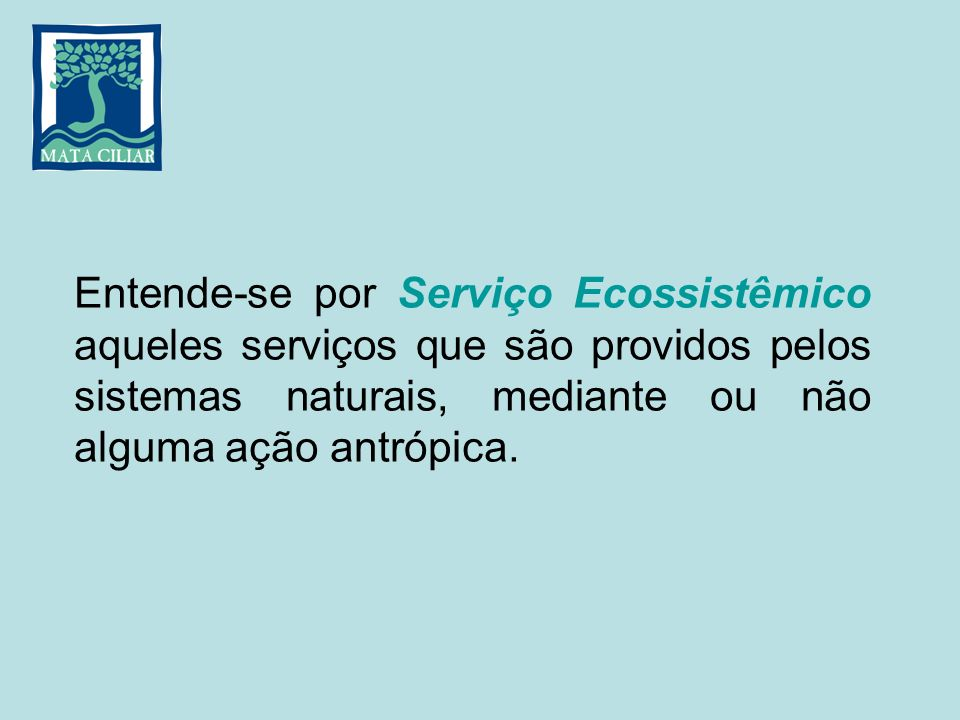 Entende-se por Serviço Ecossistêmico aqueles serviços que são providos pelos sistemas naturais, mediante ou não alguma ação antrópica.