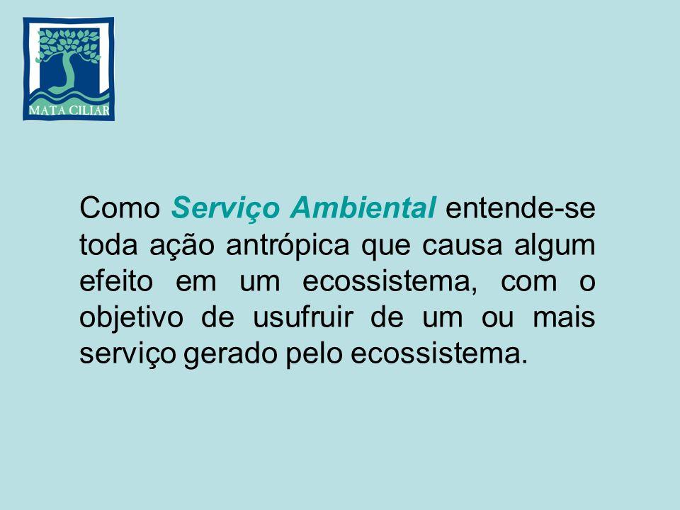 Como Serviço Ambiental entende-se toda ação antrópica que causa algum efeito em um ecossistema, com o objetivo de usufruir de um ou mais serviço gerado pelo ecossistema.