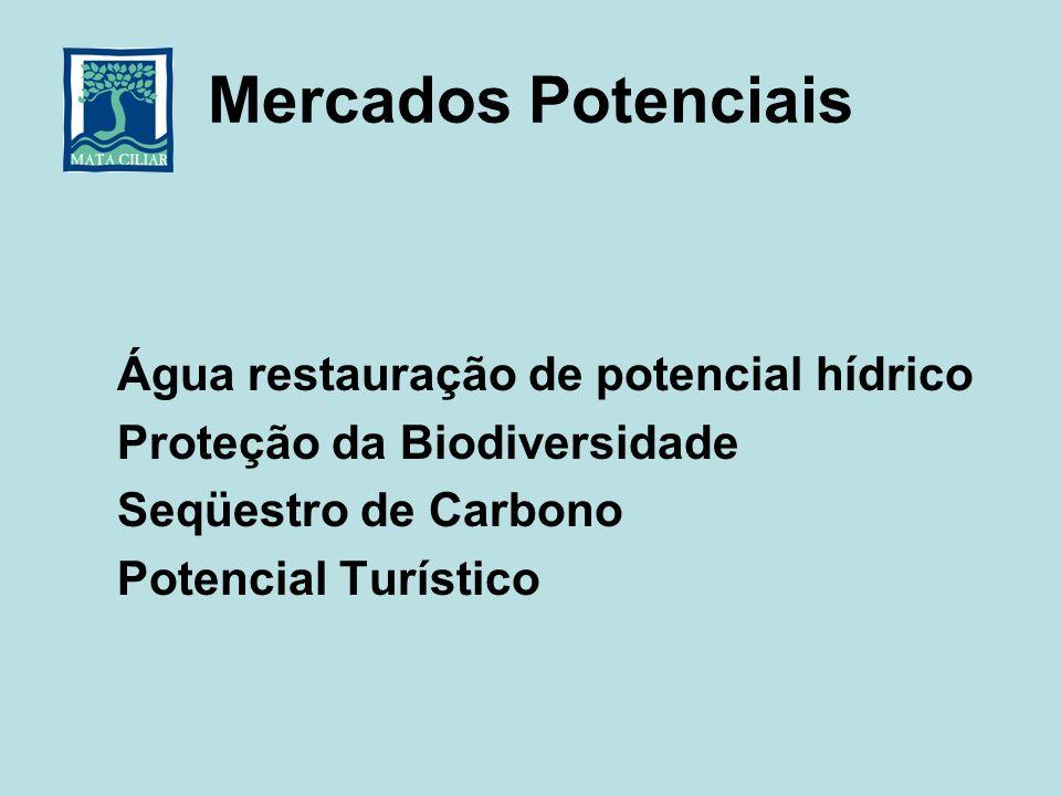 Mercados Potenciais Água restauração de potencial hídrico