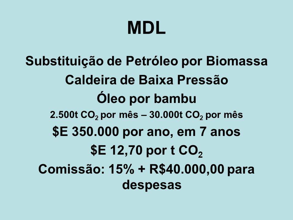 MDL Substituição de Petróleo por Biomassa Caldeira de Baixa Pressão