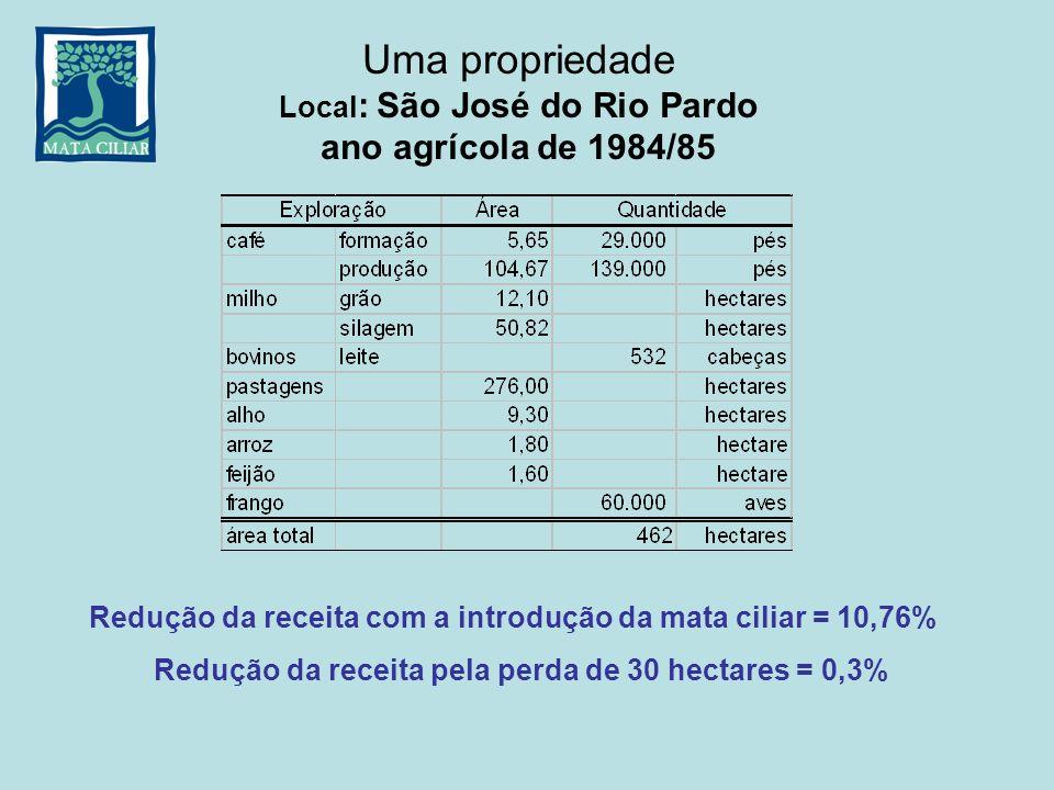 Uma propriedade Local: São José do Rio Pardo ano agrícola de 1984/85