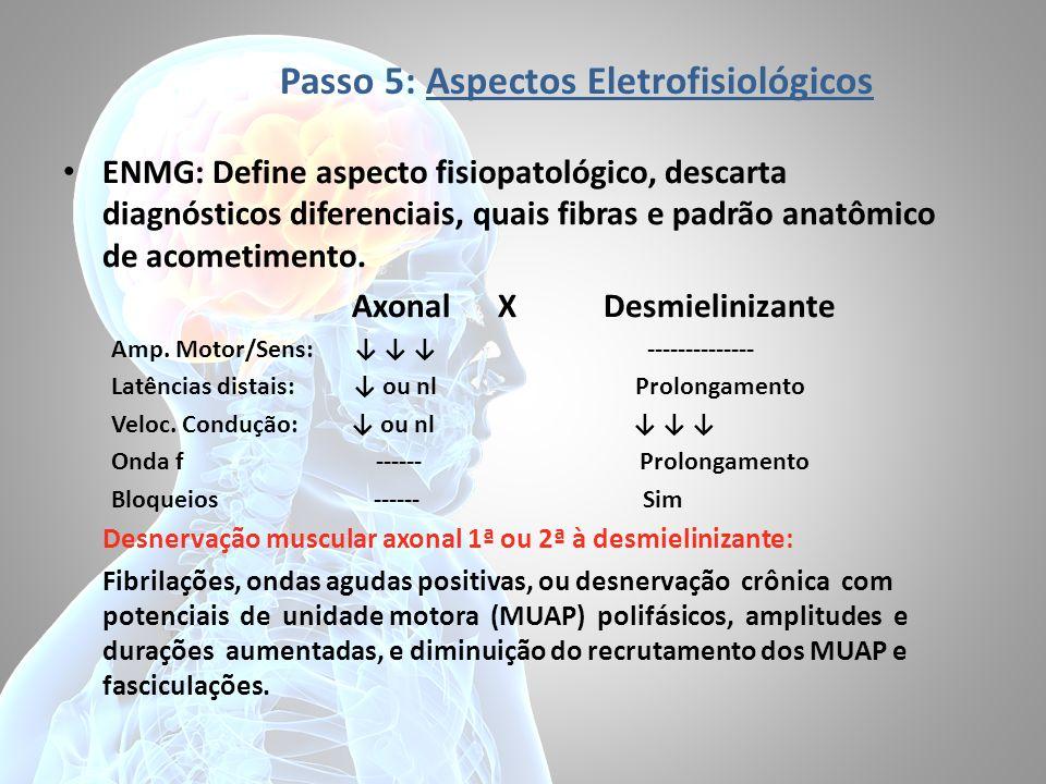 Passo 5: Aspectos Eletrofisiológicos