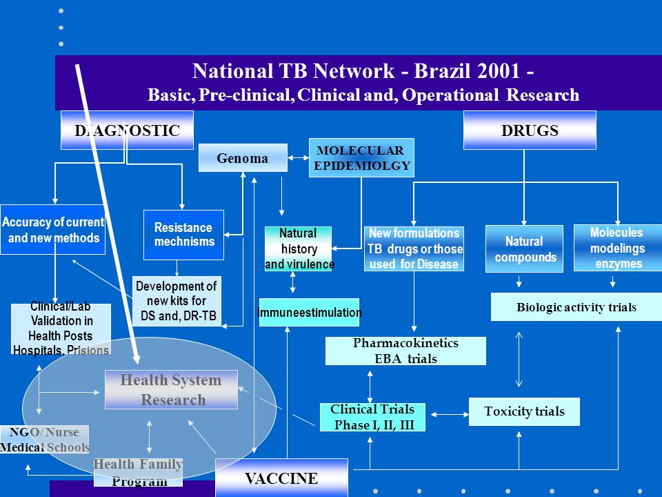 National TB Network - Brazil 2001 -