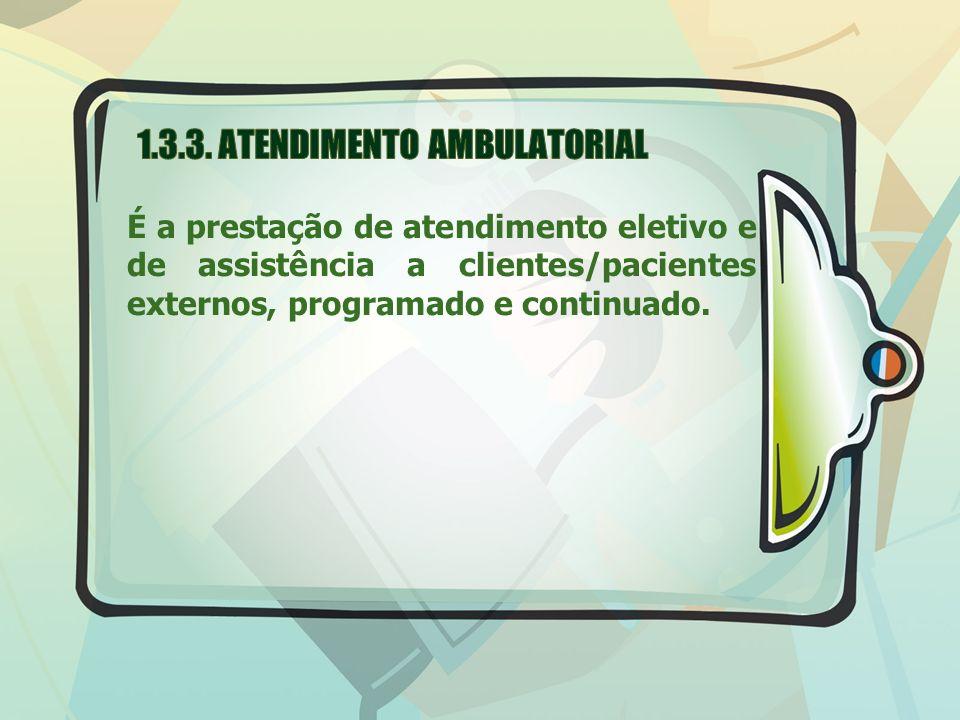 1.3.3. ATENDIMENTO AMBULATORIAL