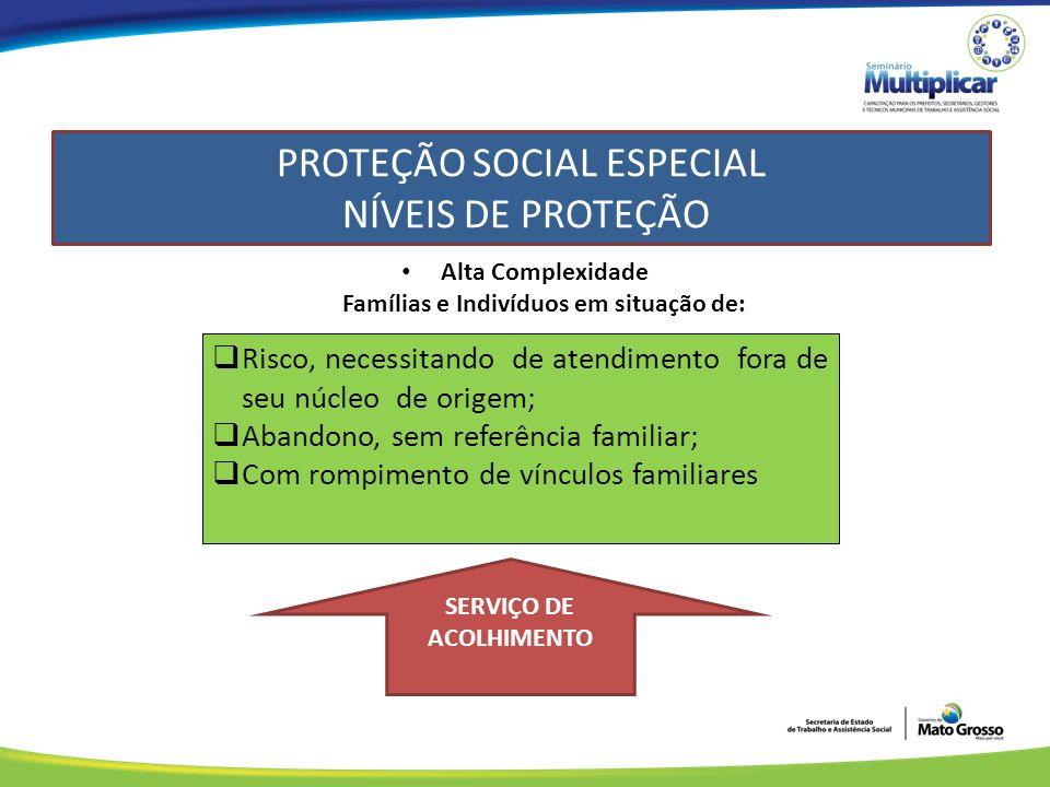 PROTEÇÃO SOCIAL ESPECIAL NÍVEIS DE PROTEÇÃO