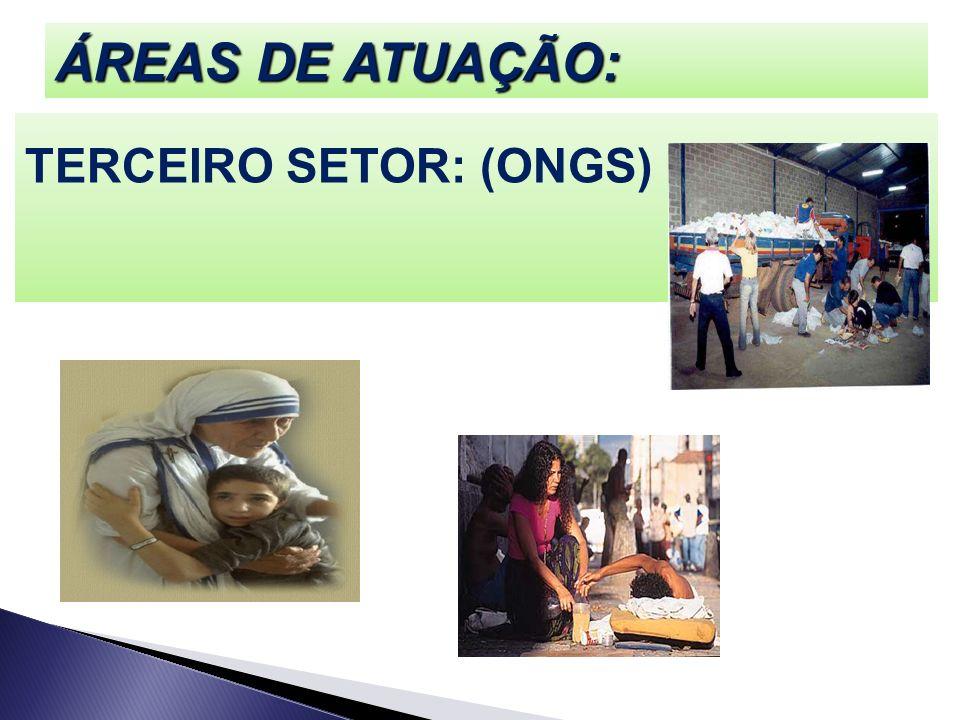 ÁREAS DE ATUAÇÃO: TERCEIRO SETOR: (ONGS)