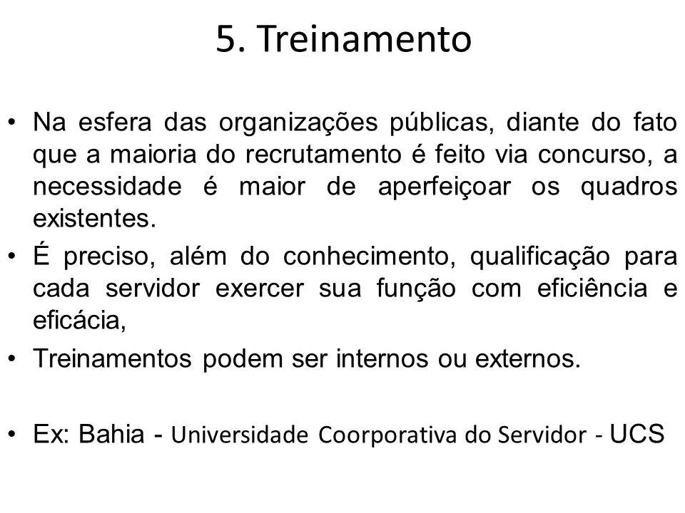 5. Treinamento