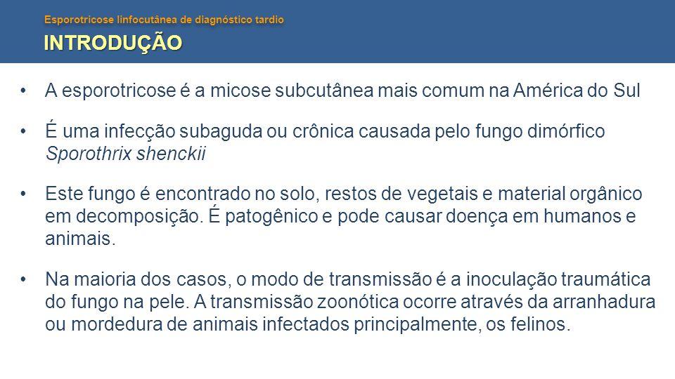 INTRODUÇÃO A esporotricose é a micose subcutânea mais comum na América do Sul.
