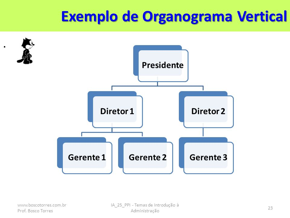 Exemplo de Organograma Vertical