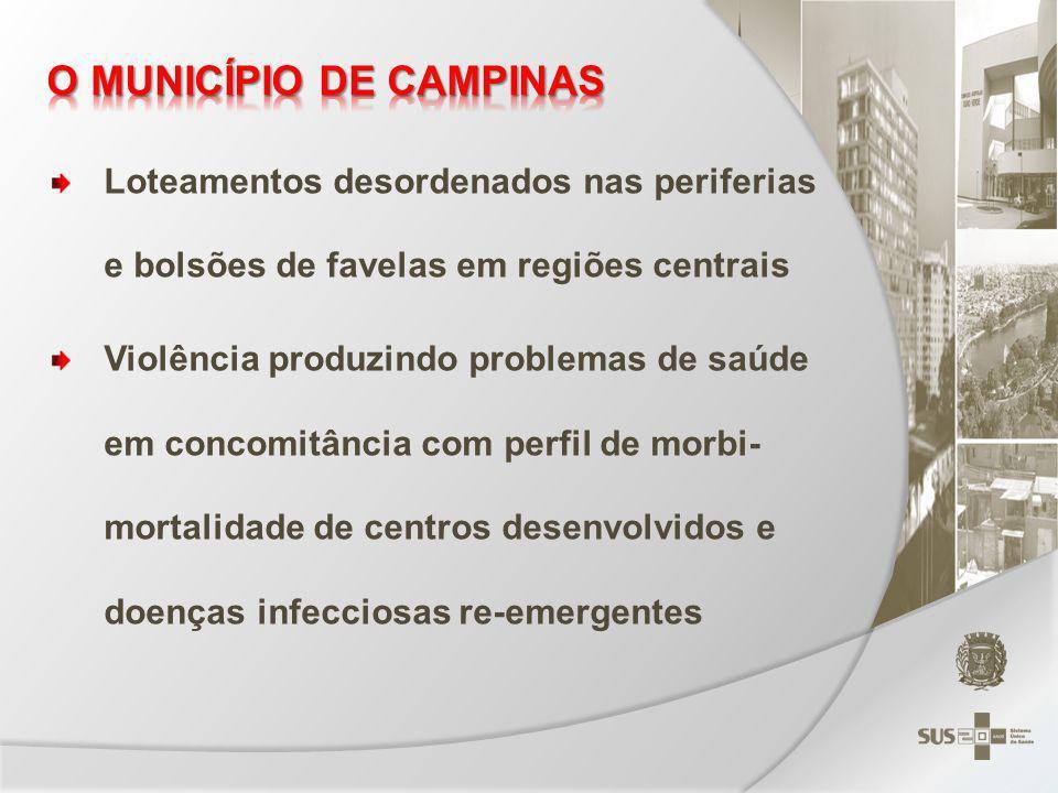 O MUNICÍPIO DE CAMPINAS