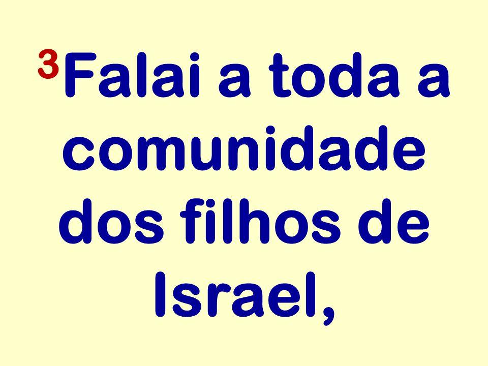 3Falai a toda a comunidade dos filhos de Israel,