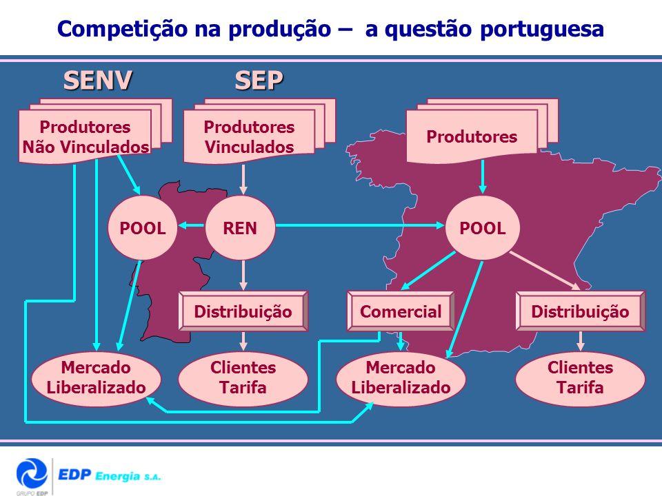 Competição na produção – a questão portuguesa