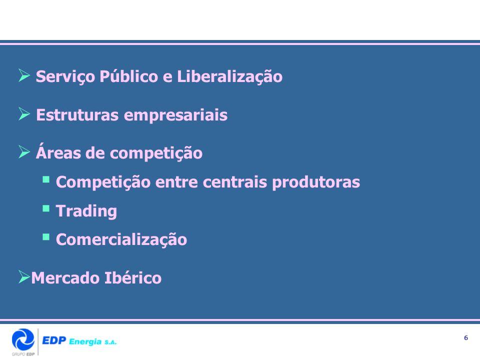 Serviço Público e Liberalização Estruturas empresariais