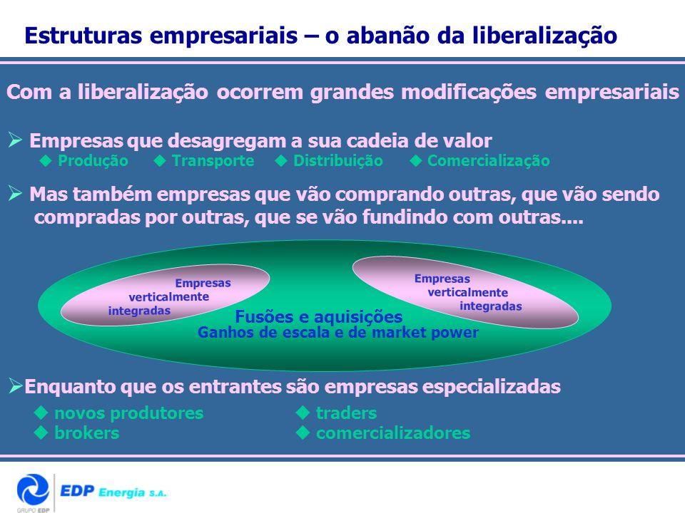 Estruturas empresariais – o abanão da liberalização