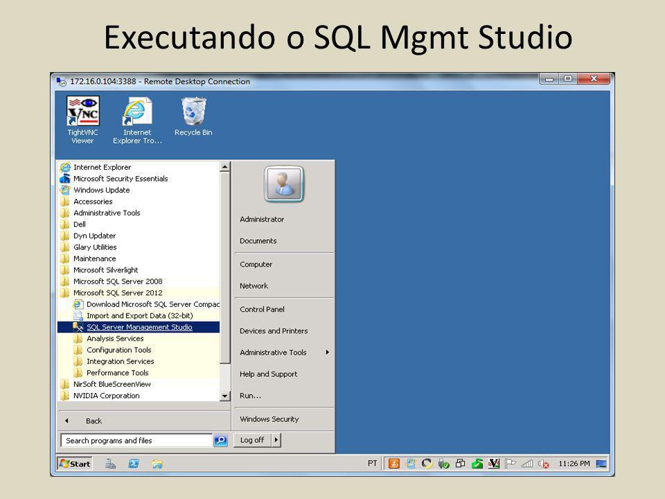 Executando o SQL Mgmt Studio