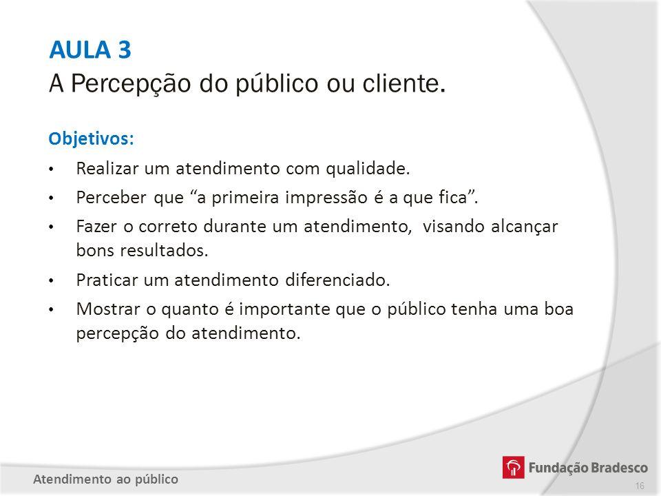 AULA 3 A Percepção do público ou cliente.