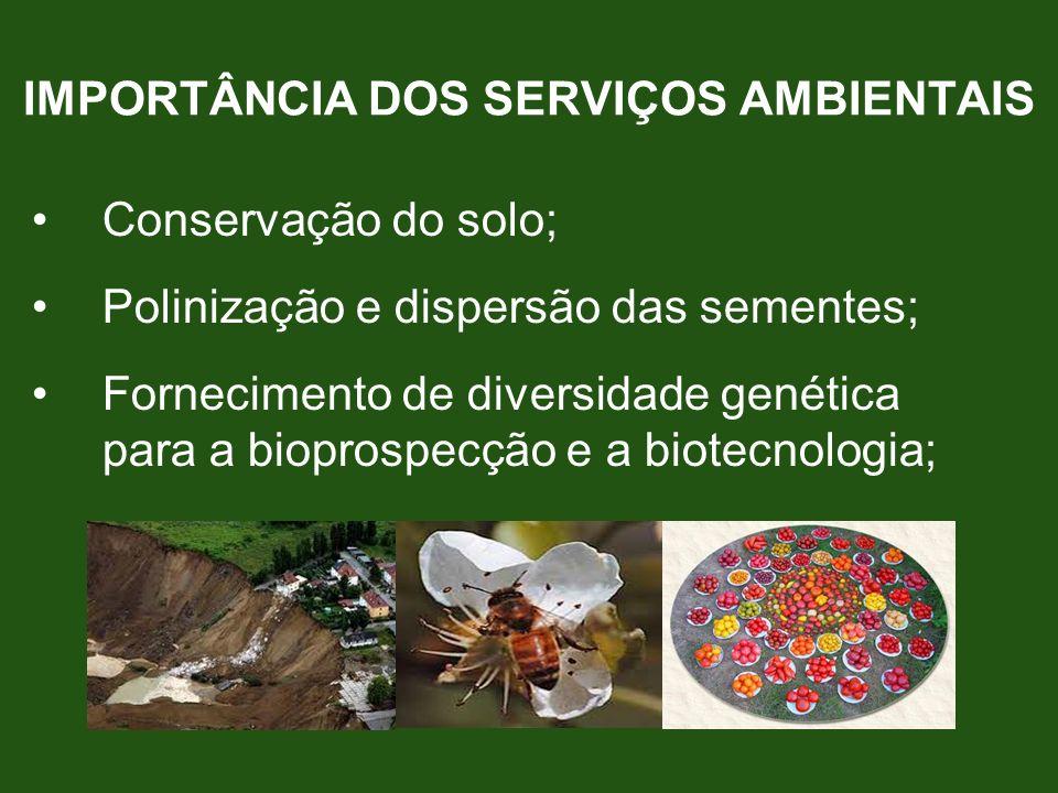 IMPORTÂNCIA DOS SERVIÇOS AMBIENTAIS