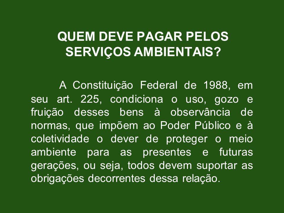QUEM DEVE PAGAR PELOS SERVIÇOS AMBIENTAIS