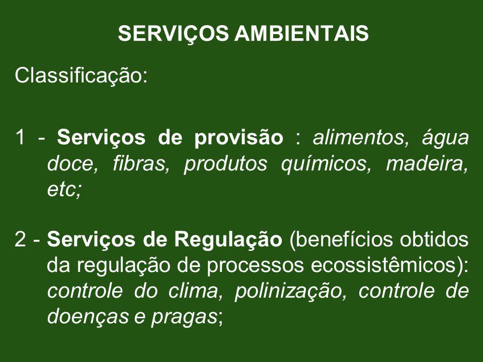 SERVIÇOS AMBIENTAIS Classificação: 1 - Serviços de provisão : alimentos, água doce, fibras, produtos químicos, madeira, etc;