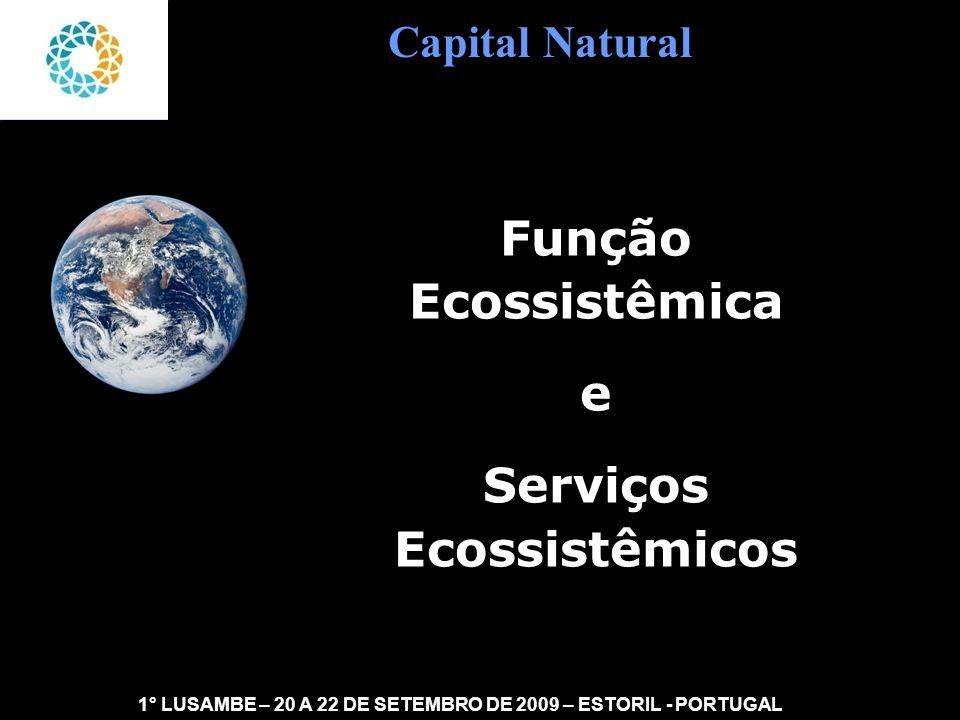 Função Ecossistêmica e Serviços Ecossistêmicos