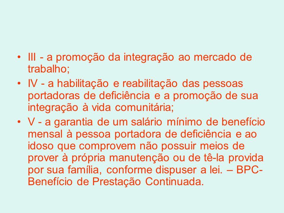 III - a promoção da integração ao mercado de trabalho;