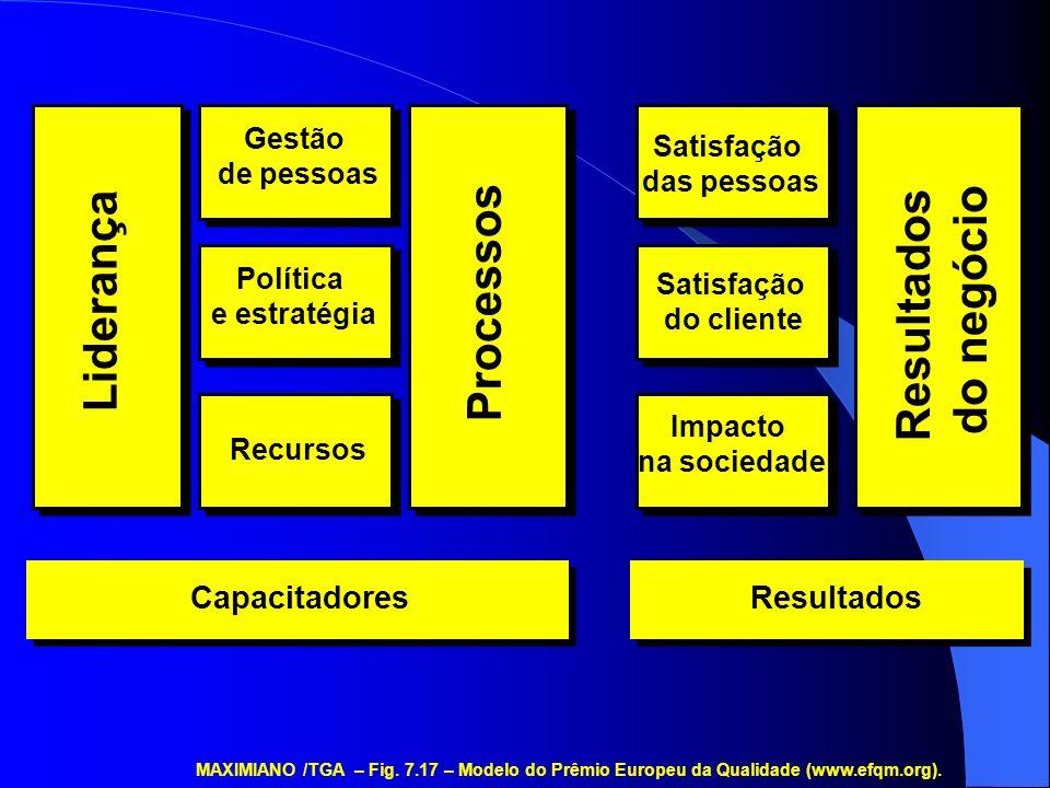 Resultados do negócio Processos Liderança Capacitadores Resultados