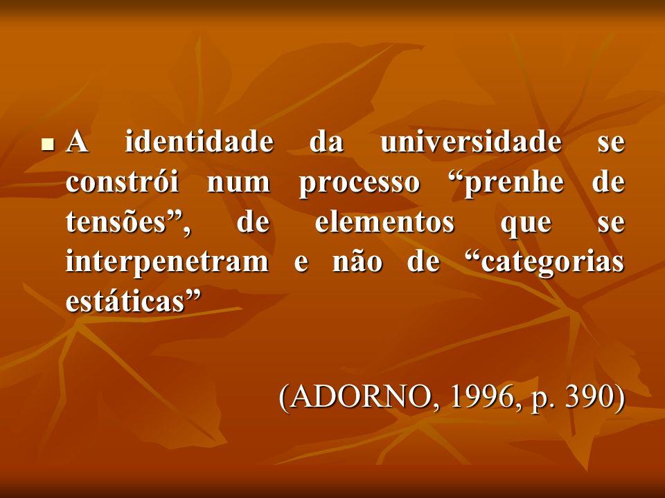 A identidade da universidade se constrói num processo prenhe de tensões , de elementos que se interpenetram e não de categorias estáticas