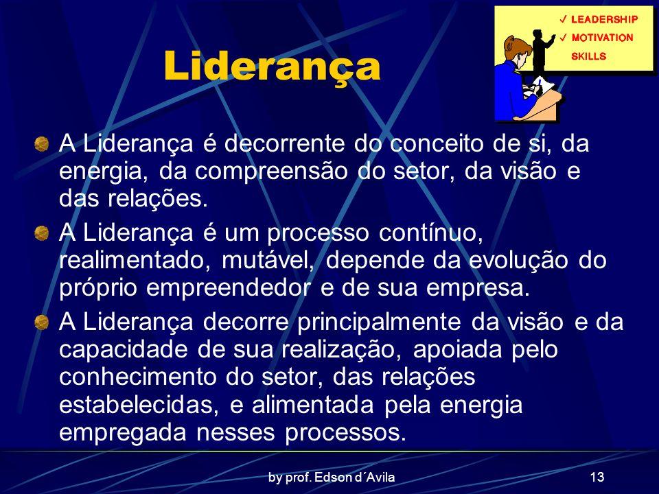 Liderança A Liderança é decorrente do conceito de si, da energia, da compreensão do setor, da visão e das relações.