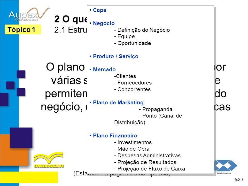 2 O que é um Plano de Negócios 2.1 Estrutura de Um Plano de Negócios