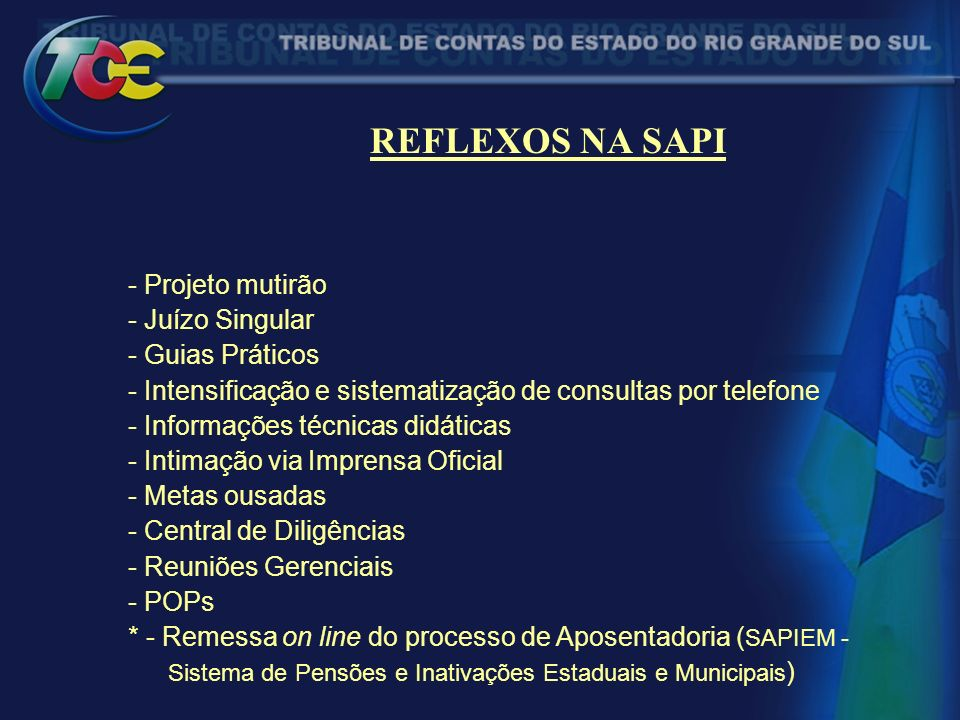 REFLEXOS NA SAPI - Projeto mutirão - Juízo Singular - Guias Práticos