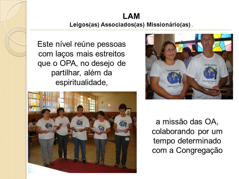 Leigos(as) Associados(as) Missionário(as) .