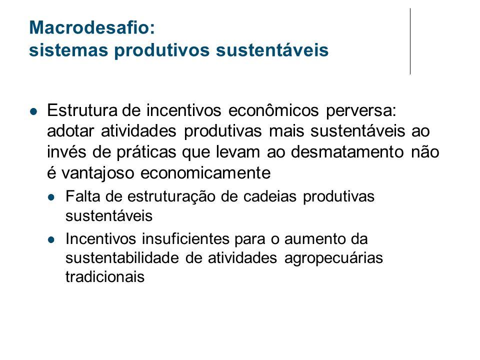 Macrodesafio: sistemas produtivos sustentáveis