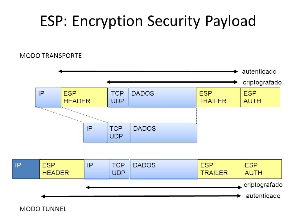 ESP: Encryption Security Payload