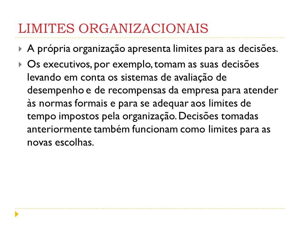 LIMITES ORGANIZACIONAIS