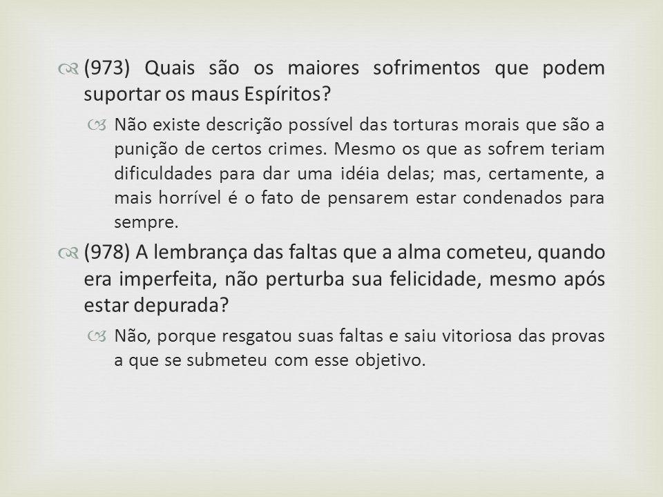 (973) Quais são os maiores sofrimentos que podem suportar os maus Espíritos