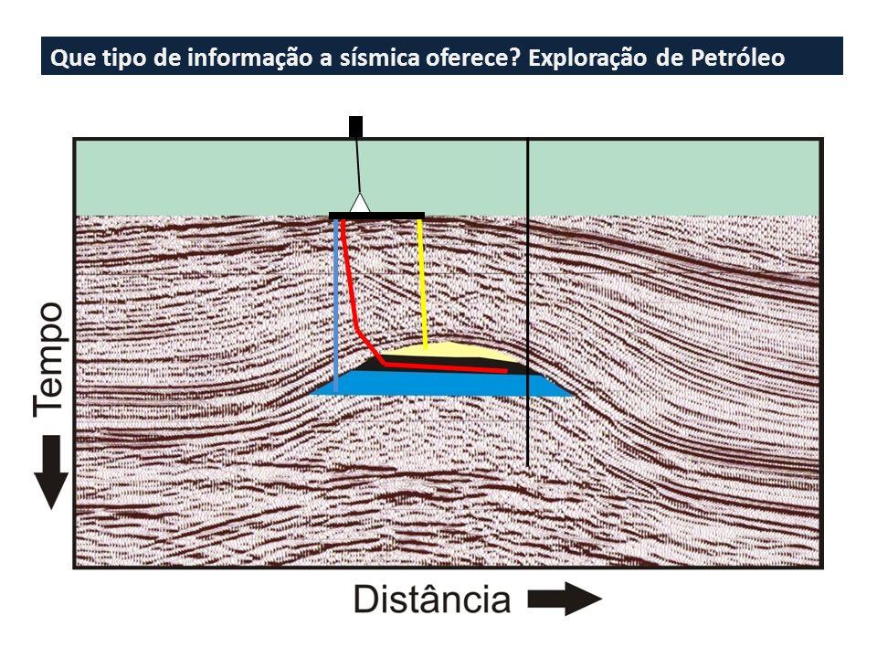 Que tipo de informação a sísmica oferece Exploração de Petróleo