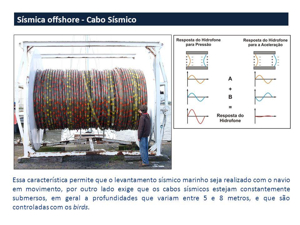 Sísmica offshore - Cabo Sísmico