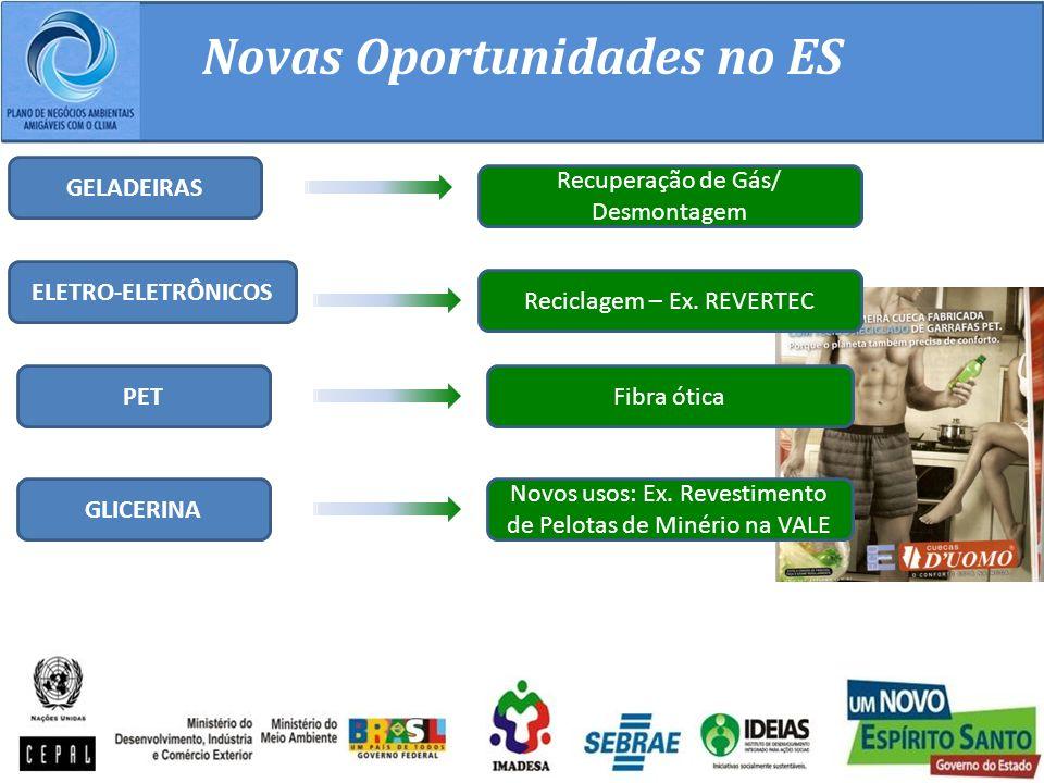 Novas Oportunidades no ES