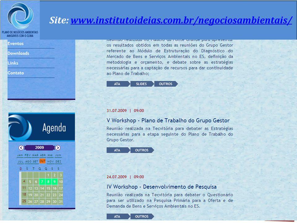 Site: www.institutoideias.com.br/negociosambientais/
