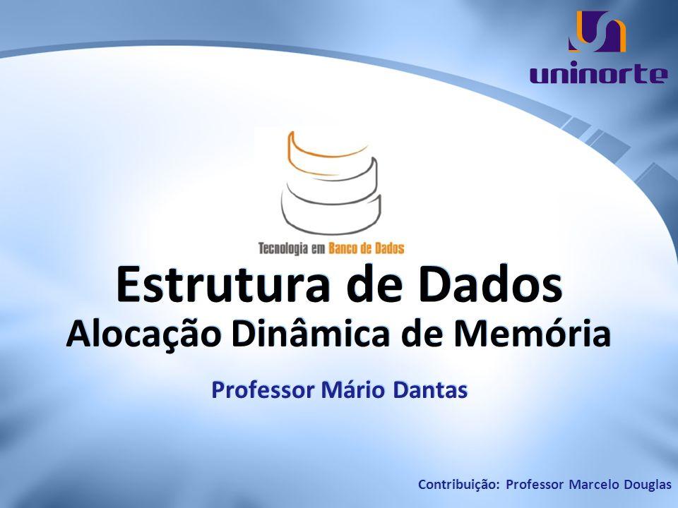 Alocação Dinâmica de Memória Professor Mário Dantas