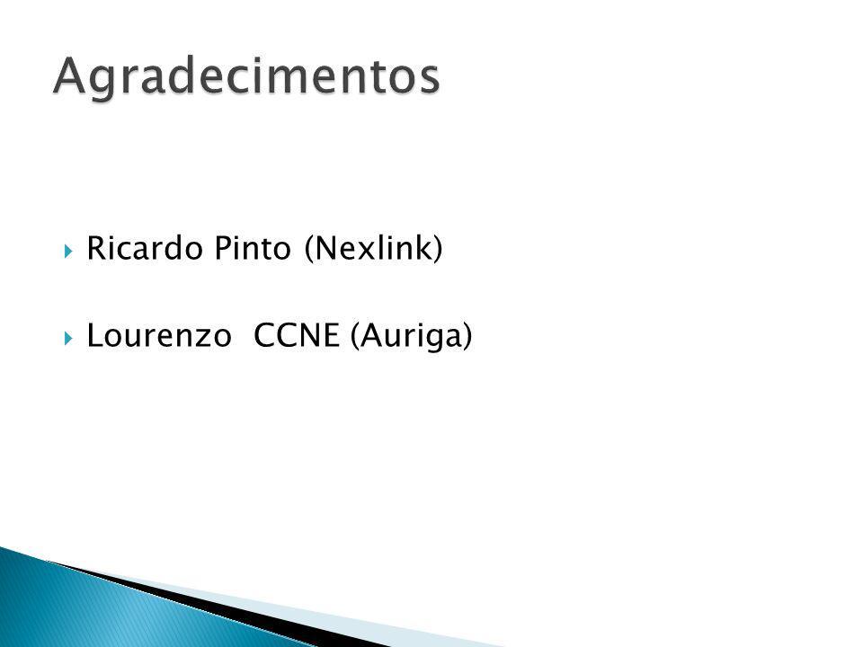 Agradecimentos Ricardo Pinto (Nexlink) Lourenzo CCNE (Auriga)
