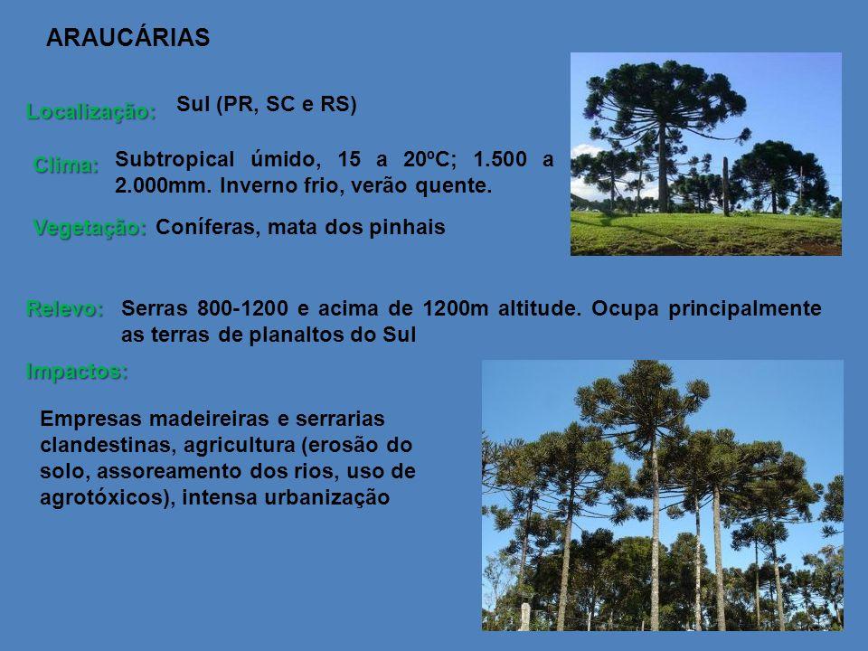 ARAUCÁRIAS Sul (PR, SC e RS) Localização:
