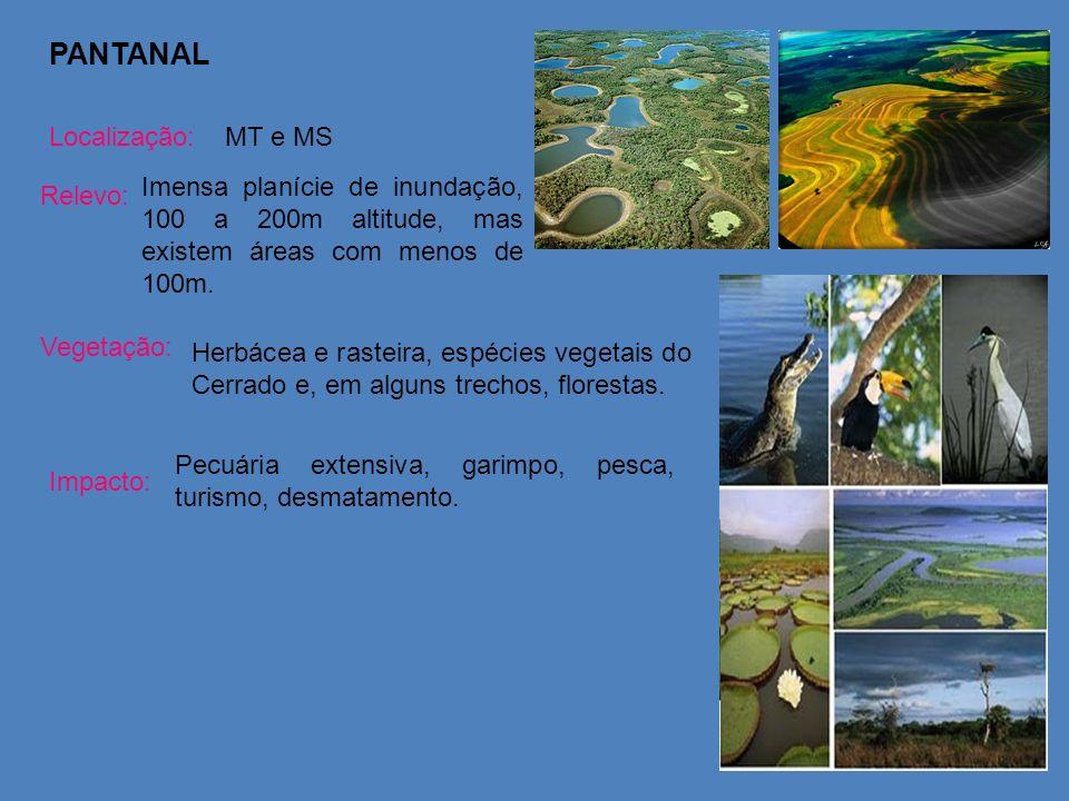 PANTANAL Localização: MT e MS
