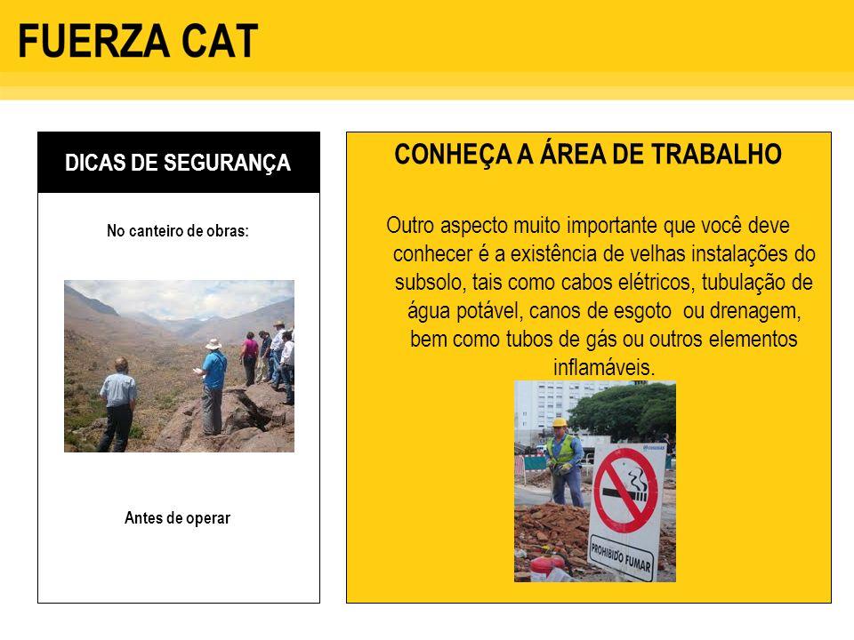 CONHEÇA A ÁREA DE TRABALHO